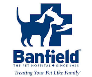 picture about Banfield Coupons Printable named Banfield pet dog healthcare facility place of work take a look at coupon : Coupon unpleasant gal