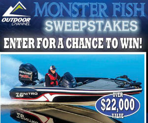 Monster fish sweepstakes from bass pro free sweepstakes for Bass pro monster fish