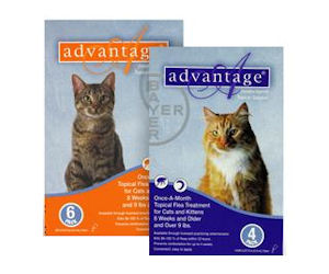 Advantage coupons for cats