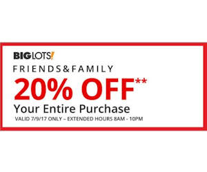 Rare Coupon Save 20 Off Entire Big Lots Purchase You Saved How Much