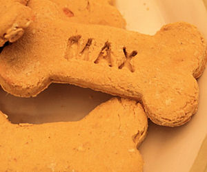 FREE Sample of Maxie Treats Na...