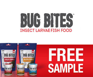 FREE Sample of Fluval Bug Bite...