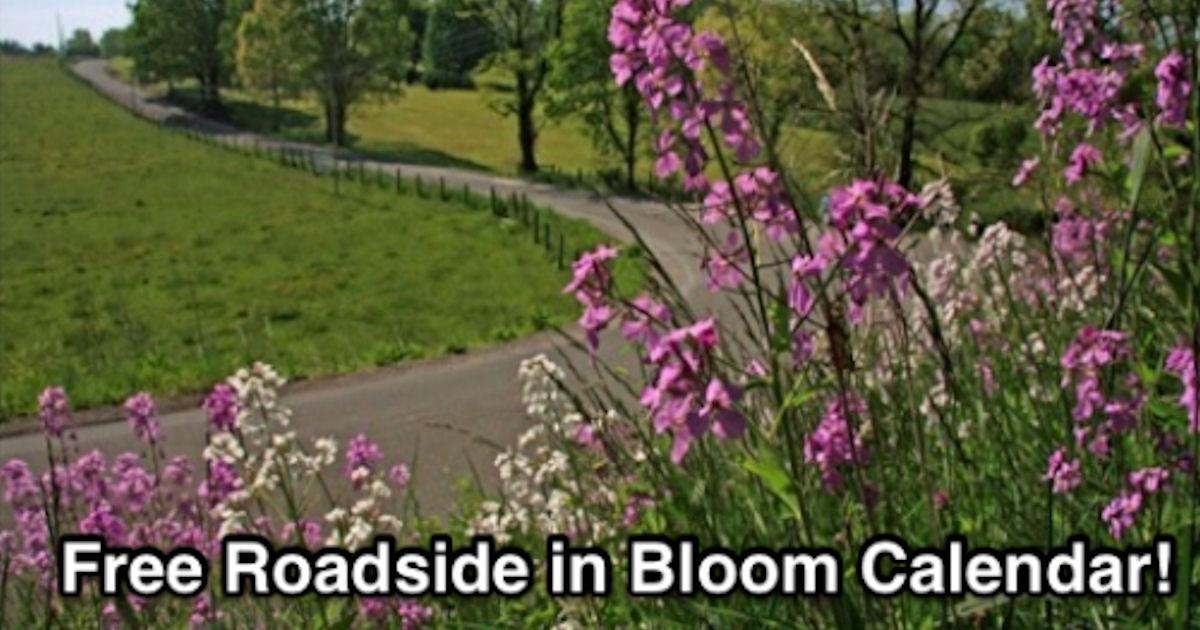 FREE 2019 Roadsides in Bloom C...