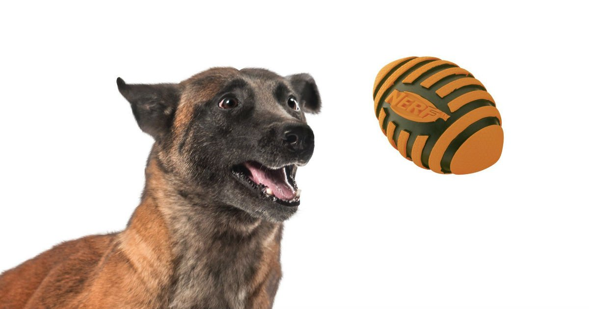 Nerf Dog Football on Amazon