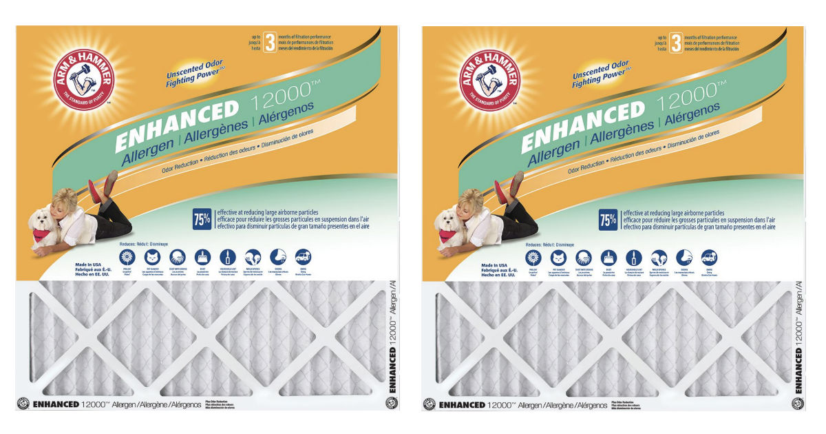 Arm & Hammer Air Filter 12-Packs ONLY $54.45 Shipped