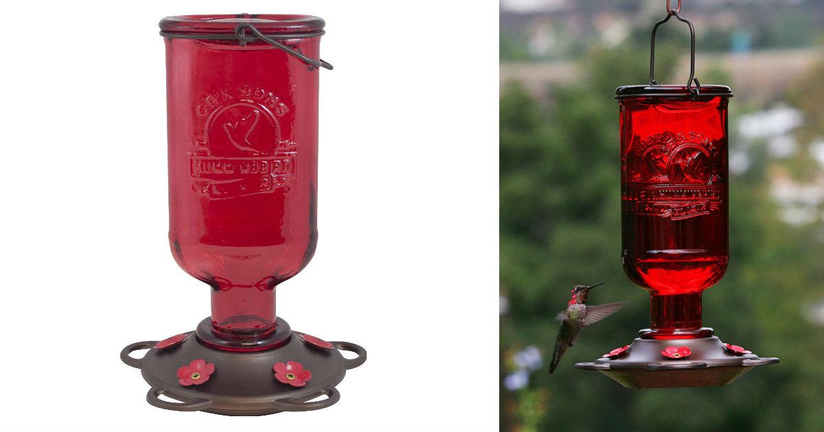 Glass Hummingbird Feeder ONLY 8.32 (Reg. $20)