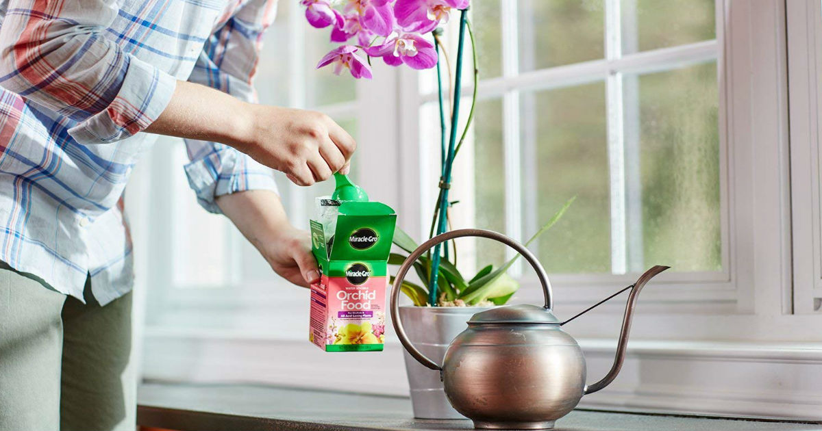 Miracle-Grow Orchid Food ONLY $3.59 on Amazon (Reg. $11.44)