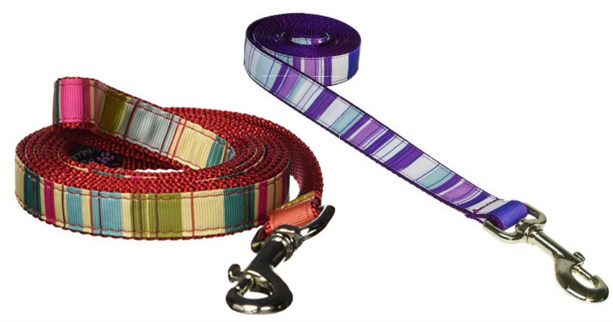 Sassy Dog Wear Stripe Leash ONLY $4.06 (Reg. $12)