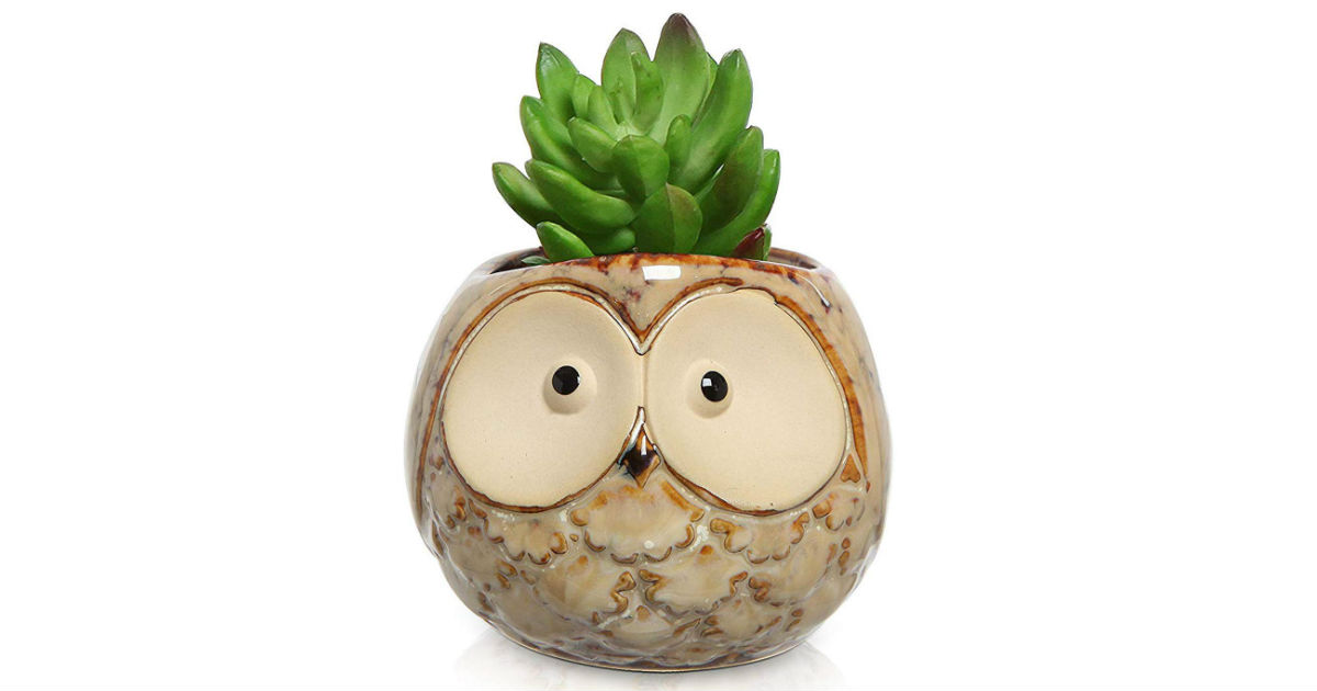 UFIG Owl Succulent Planter Pot ONLY $5.48 (Reg. $16)