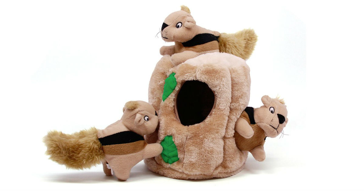 Outward Squirrel Dog Toy ONLY $6.39 (Reg. $13)
