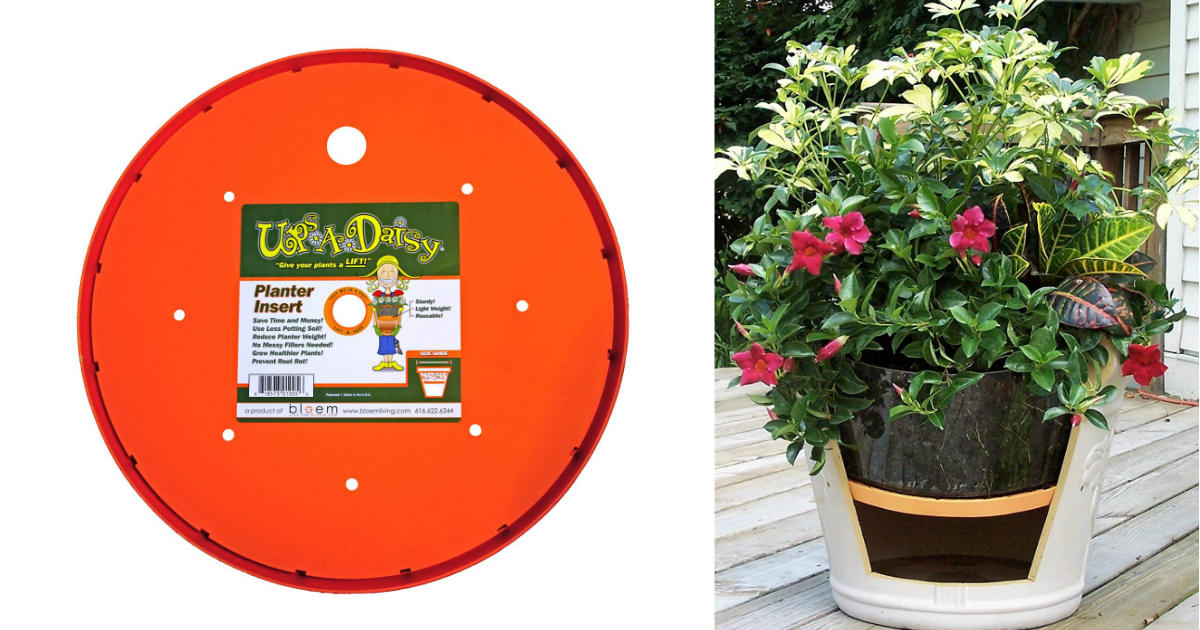 Bloem Ups-A-Daisy Round PlanterInsert ONLY $7.98 (Reg. $17)