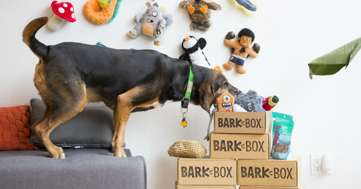 BarkBox ONLY $5.00 + FREE Extra Toy