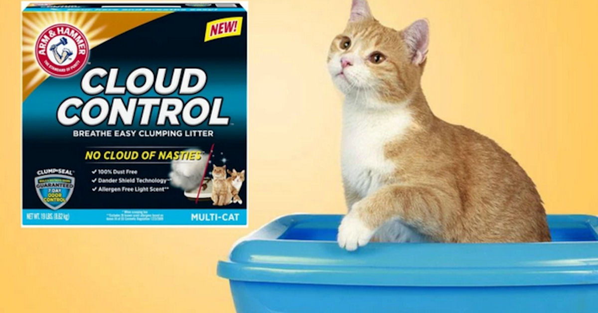 Arm & Hammer Kitty Krew - FREE Cat Products