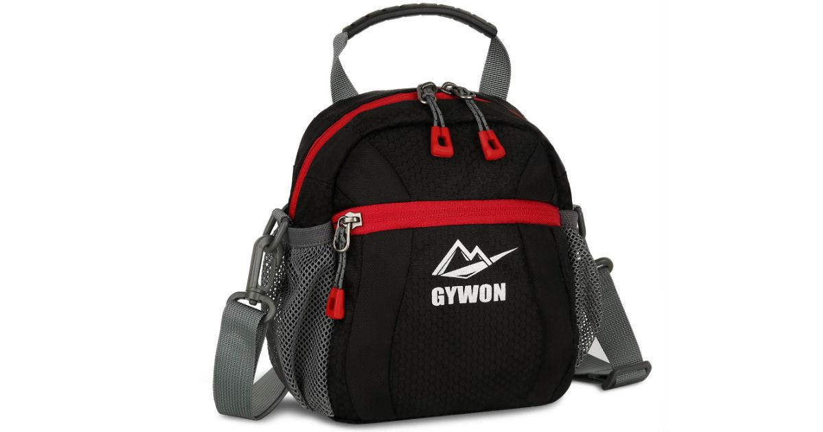 Gywon Messenger Shoulder Bag ONLY $5.24 (Reg. $15)