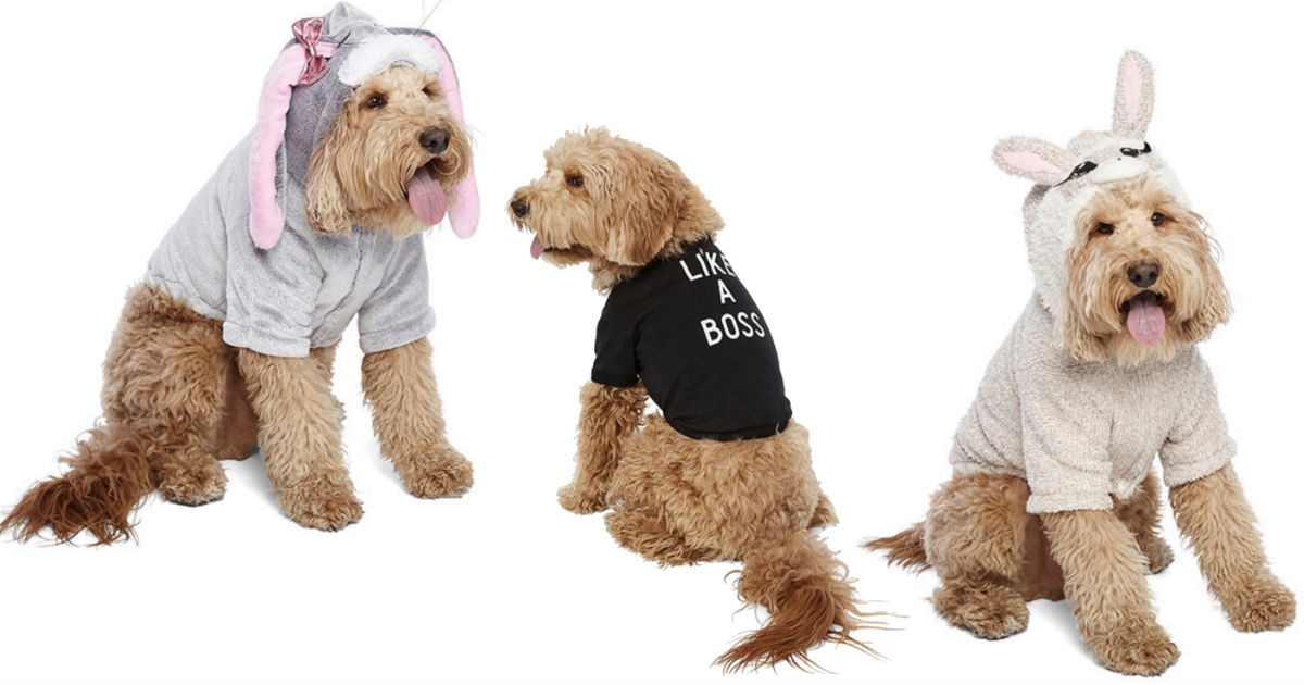 Pet Costume ONLY $4.34 at JCPenney