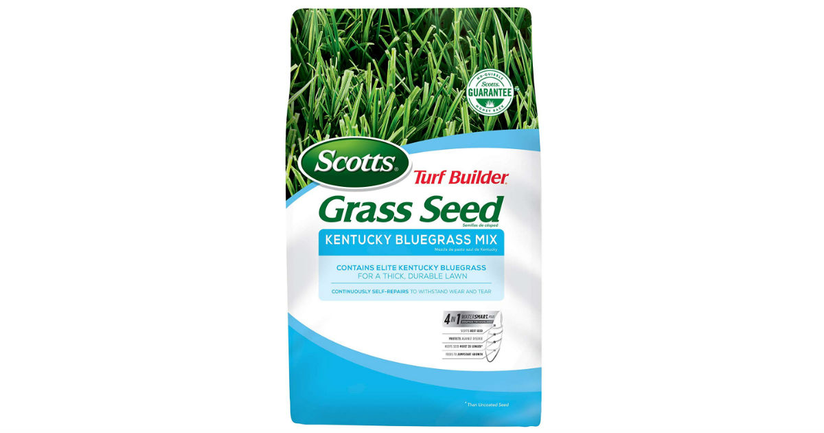 Scotts Turf Builder Grass Seed ONLY $23.07 (Reg. $48)