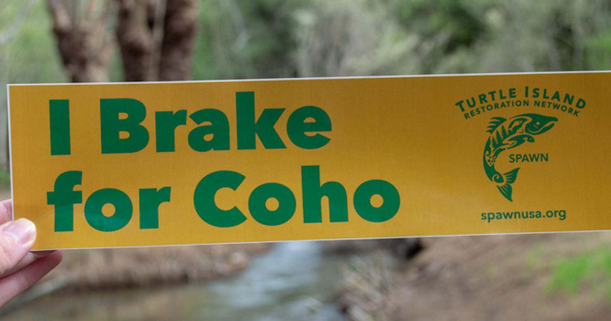 """FREE """"I Brake for Coh..."""