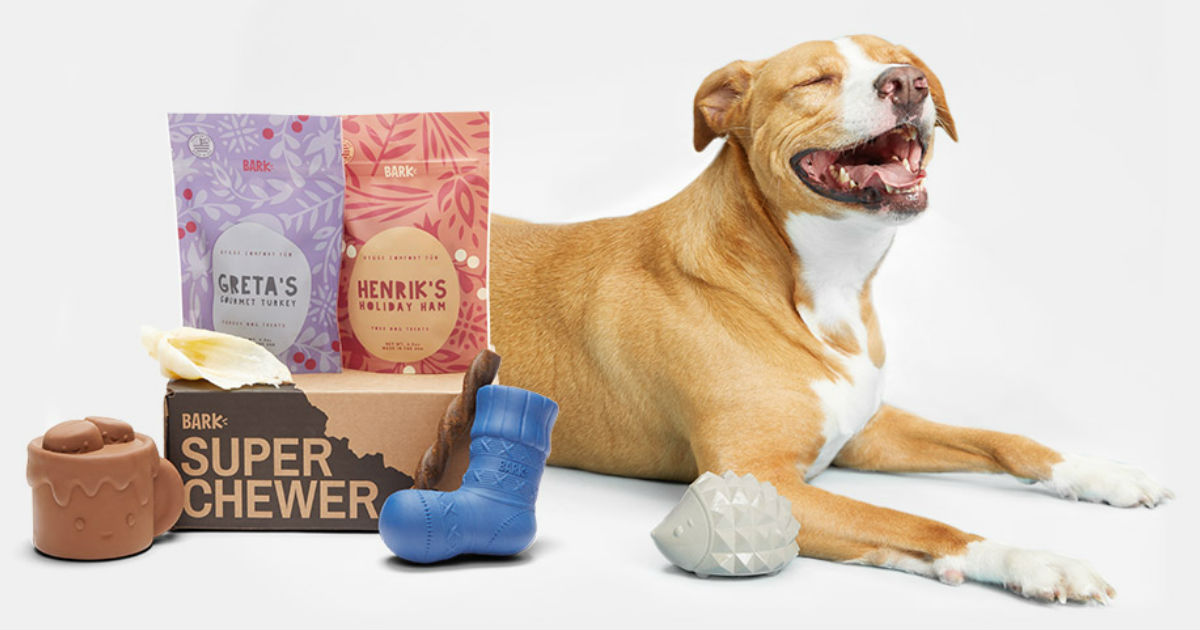 Super Chewer Dog Box ONLY $5.00 + Free Shipping (Lowest Price!)