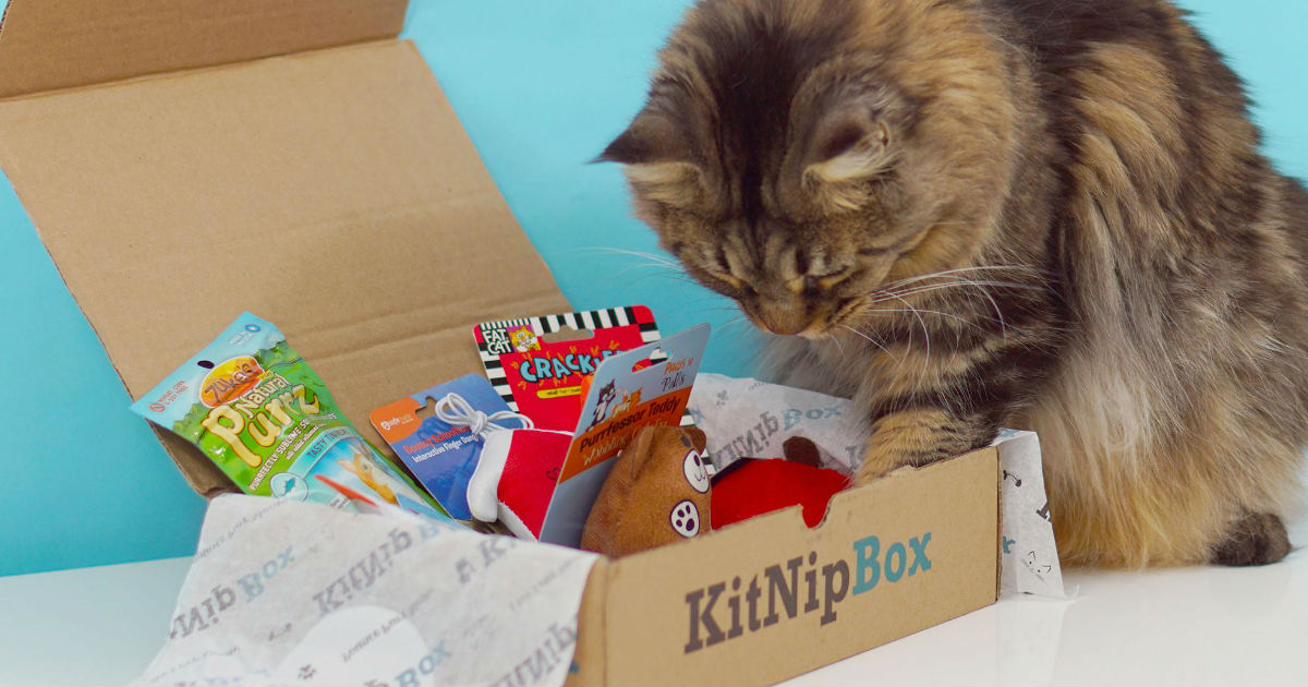 KitNipBox ONLY $9.99 Shipped (...