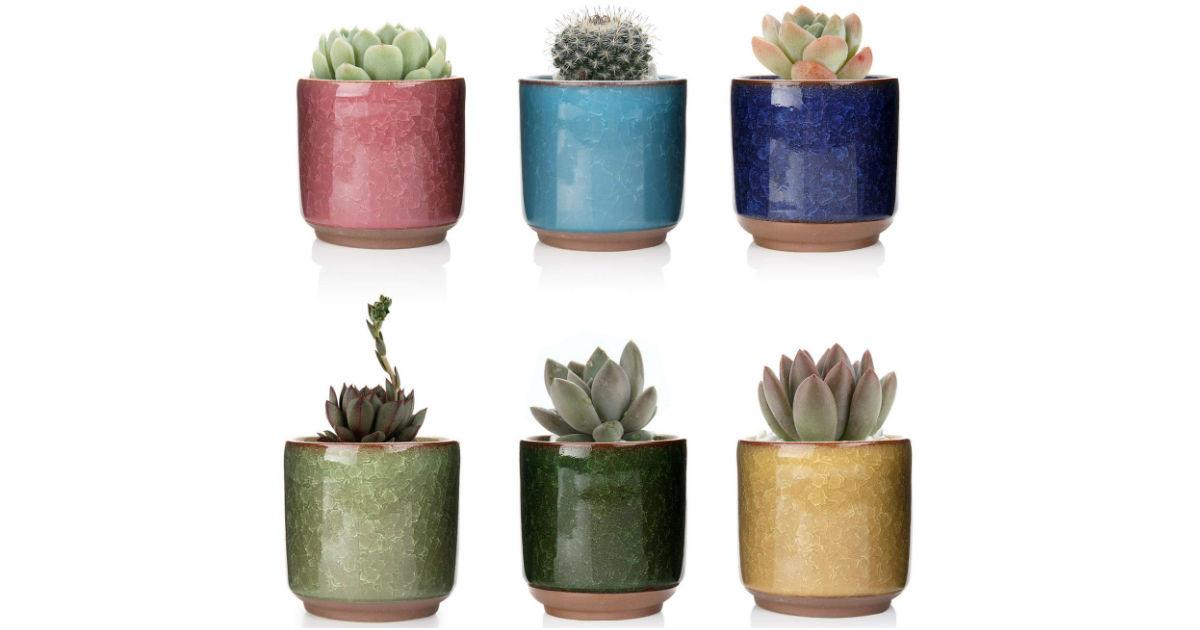 Ceramic Plant Pots 6-Pack ONLY $6.29 (Reg $14)