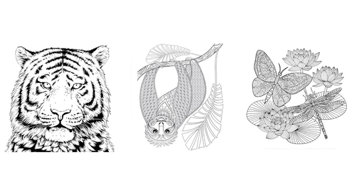 FREE WWF Coloring Pages