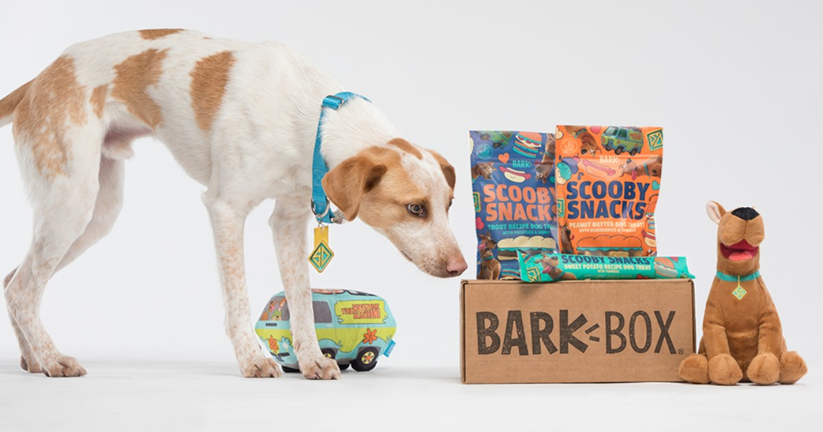 FREE Extra Toy for Life with Scoob! Themed BarkBox