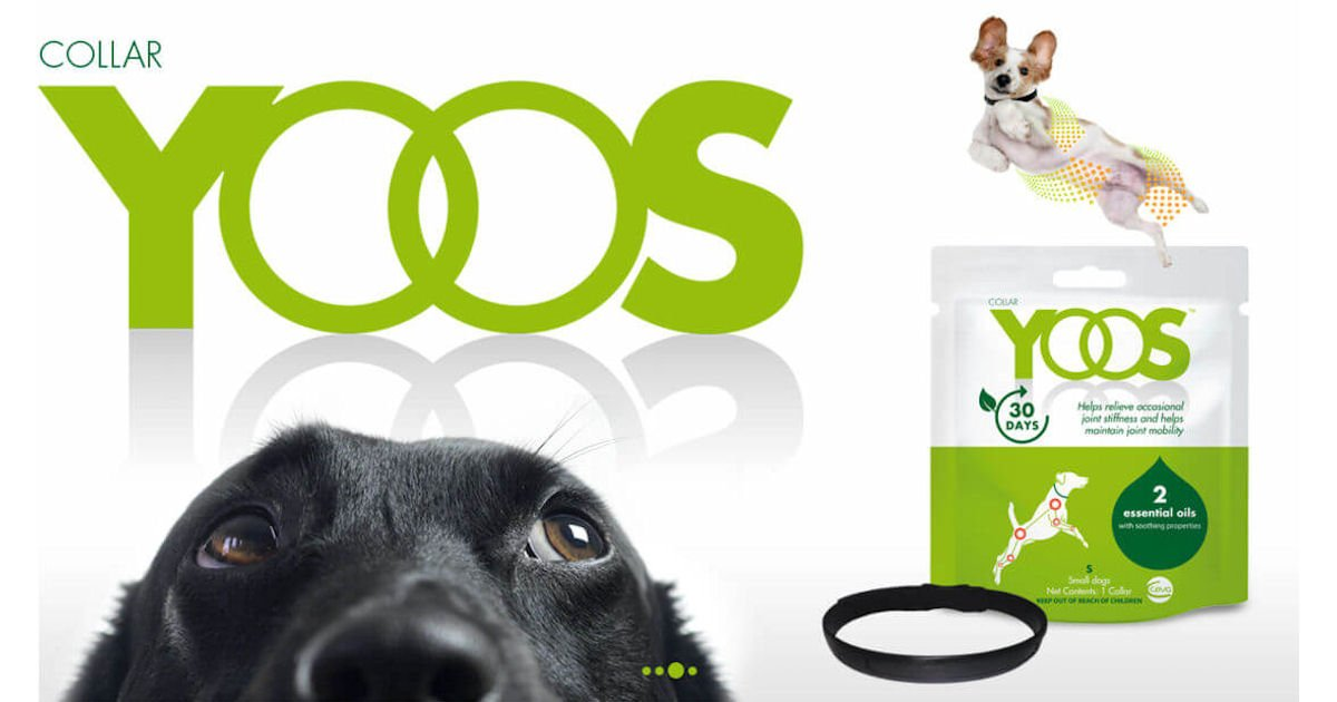 FREE YOOS Essential Oil Dog Co...