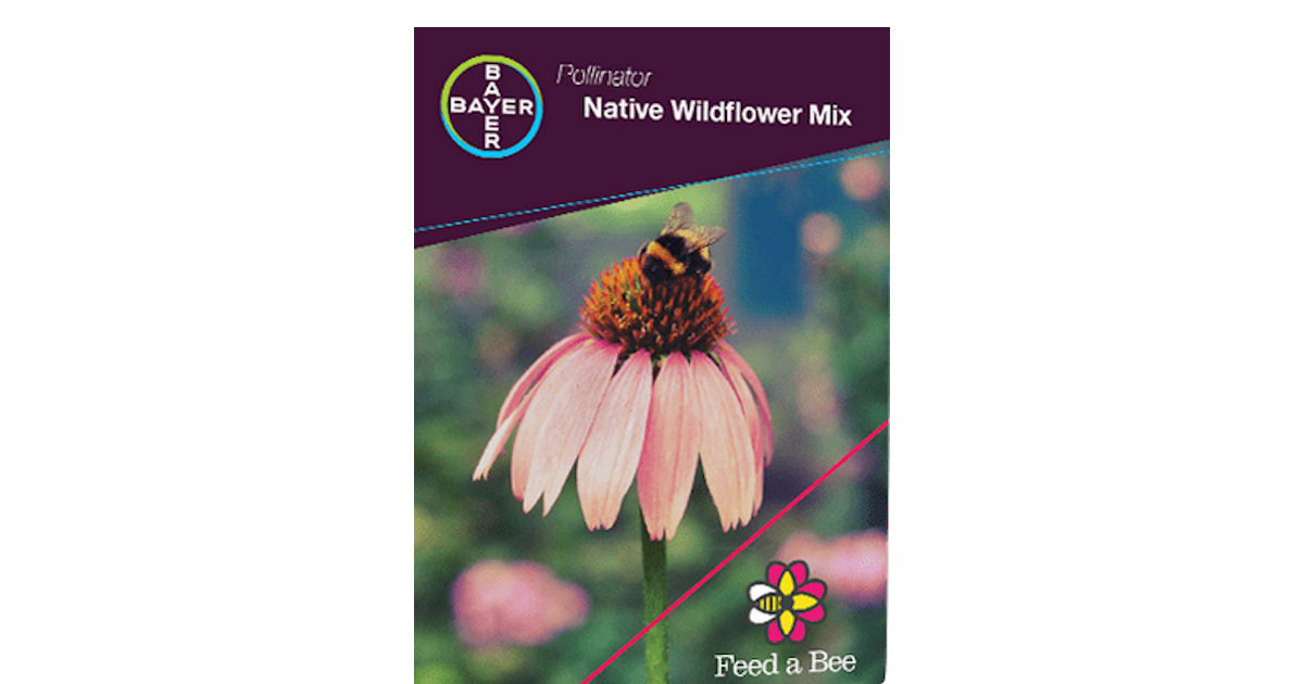 FREE Feed a Bee Wildflower Seeds