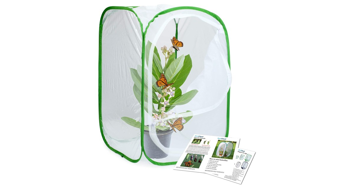 nsect and Butterfly Habitat Cage ONLY $13.99 (Reg. $25)