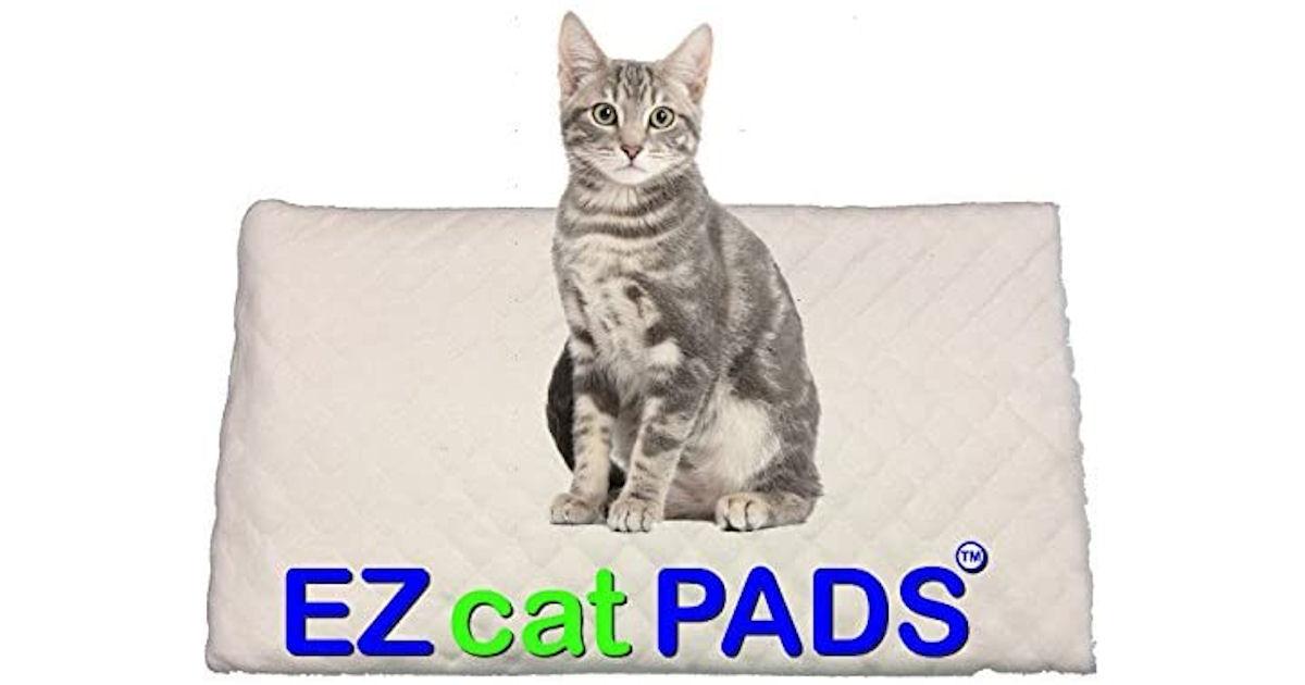 FREE Sample of EZ Cat Pads