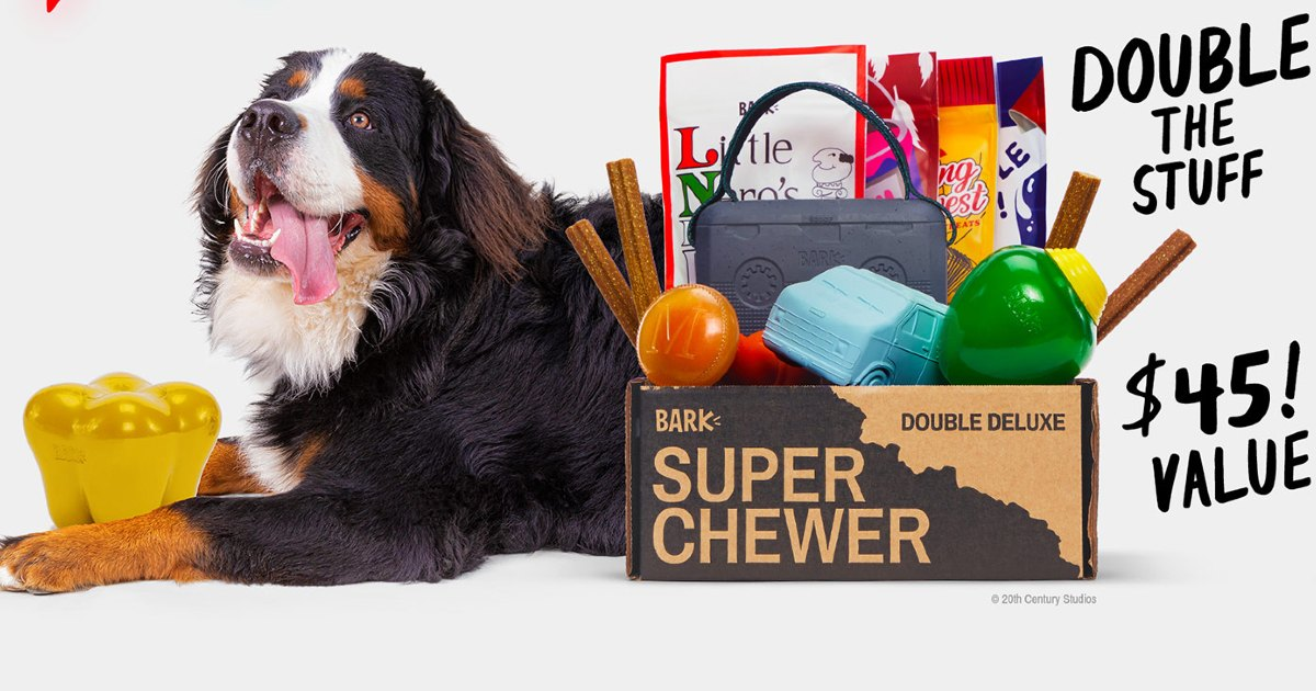 Super Chewer: Double Your Dog's First Box
