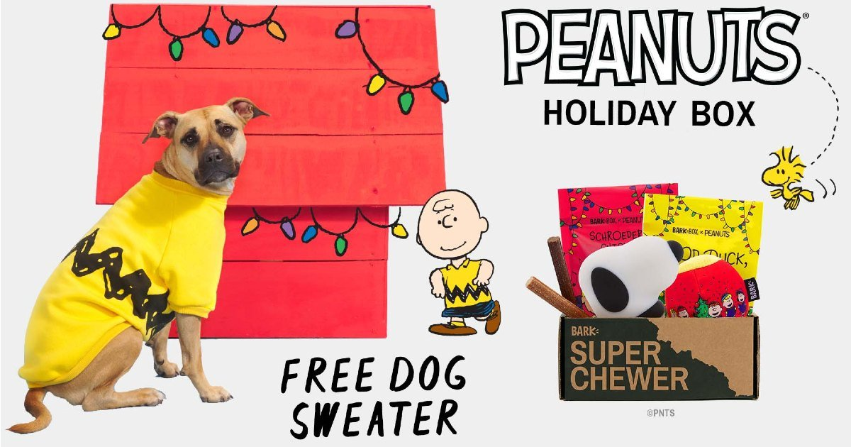 Free Peanuts Sweater with Peanuts Holiday Box from Super Chewer