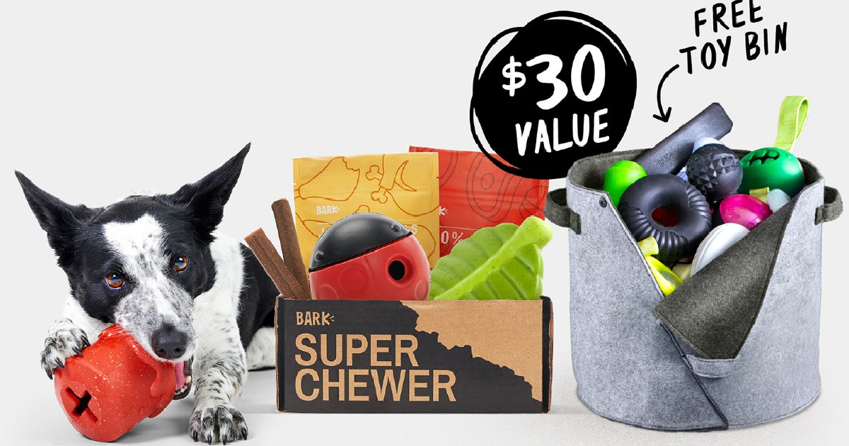 FreeFelt Dog Toy Binand Free Shipping fromSuper Chewer