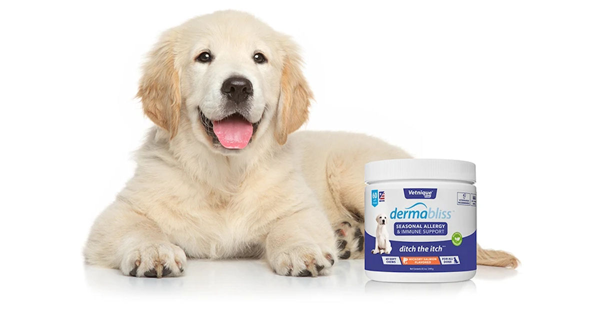 FREE Dermabliss Allergy Care for Pets Sample