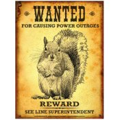 Manufacturer Coupons Mail >> FREE Wanted Squirrel Rauckman Utility Poster - Free ...