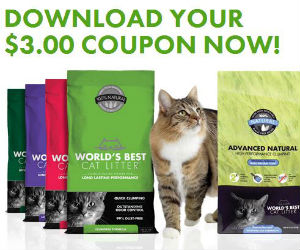 photograph about Cat Litter Printable Coupons known as Worlds Simplest Cat Muddle - Coupon for $3 off - Printable Coupon codes
