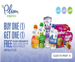graphic about Plum Organics Printable Coupon named Plum Organics - Coupon for Obtain A person Just take One particular No cost Goods