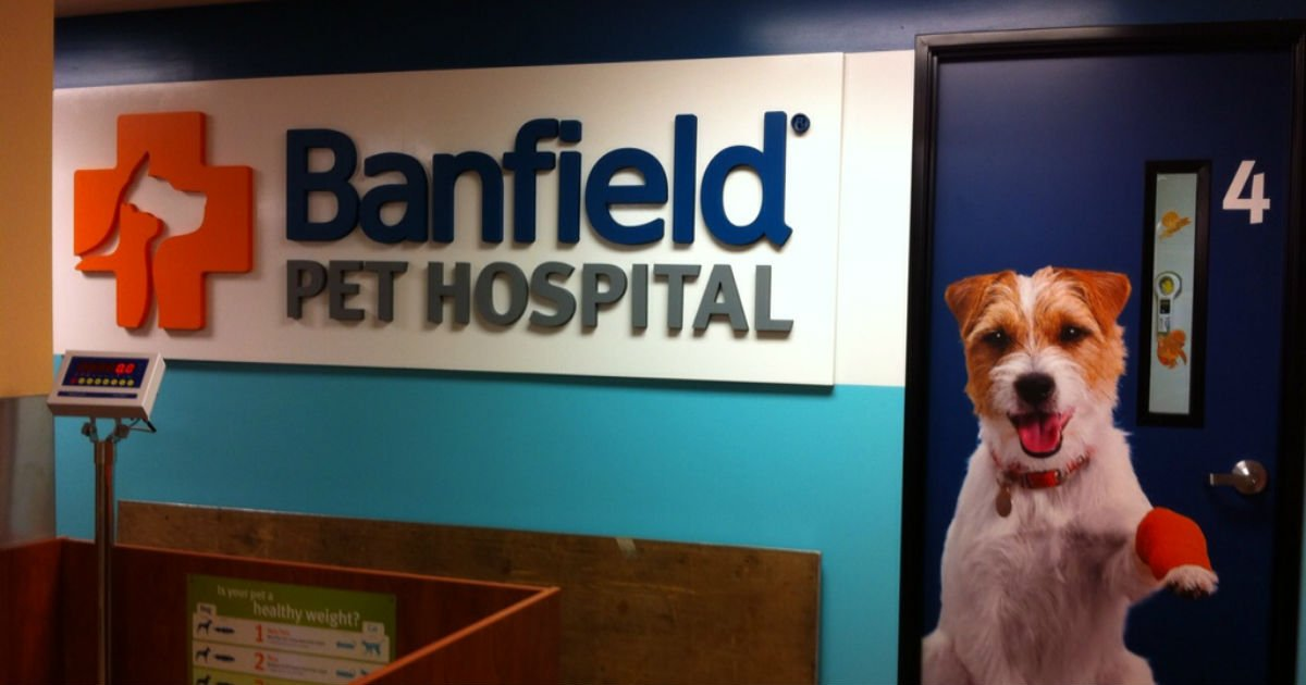 photo about Banfield Coupons Printable titled Banfield Puppy Medical center - Absolutely free Business office Take a look at Session