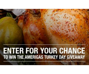 Win A Turkey Fryer Gas Grill Home Depot Gift Card More Free Sweepstakes Contests Giveaways