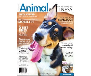 FREE Digital Subscription to A...
