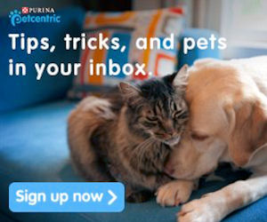 Sign Up for the Purina Petcent...