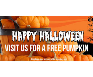 FREE Pumpkin, Flashlight, Hotd...