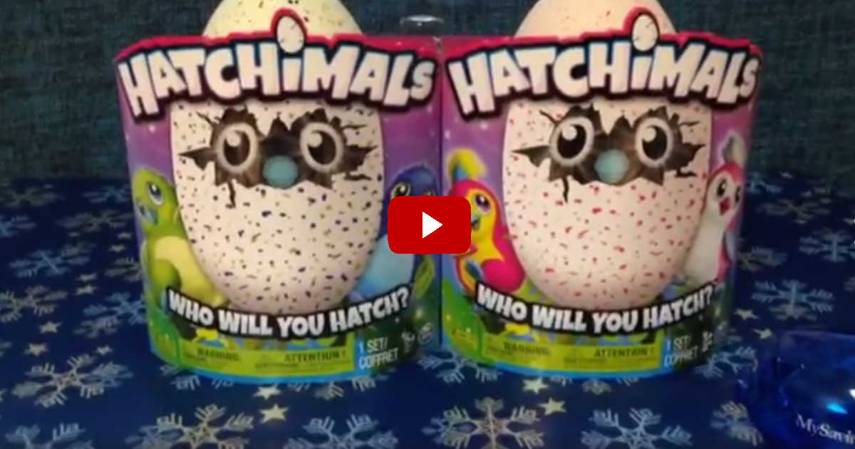 Hatchimal Giveaway Facebook