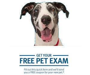 Banfield Veterinary Hospital -...