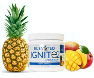 FREE Sample of Ignite2 Energy.